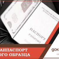 Заграничный паспорт нового образца.